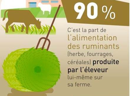 ILLUTRATION INFOGRAPHIE